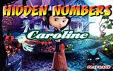 Скрытые числа Каролины